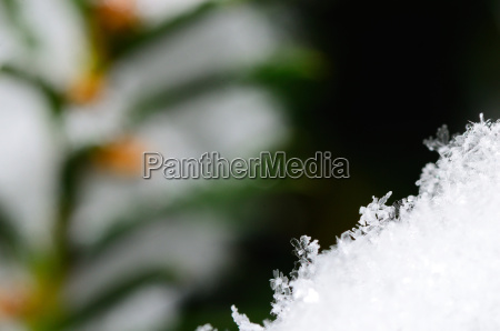 many crystals in snow