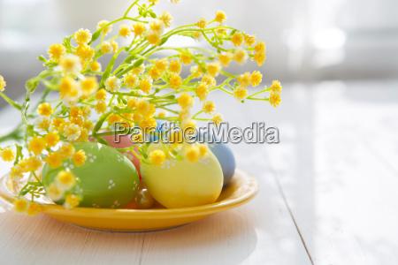 easter, eggs - 13660312