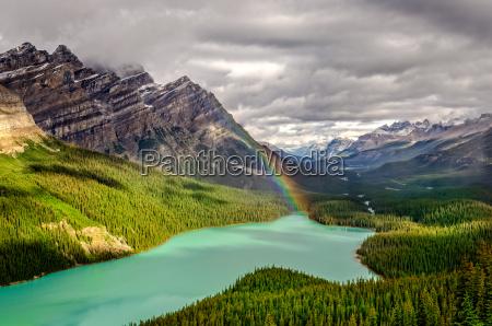 scenic, mountain, view, of, peyto, lake - 13685504