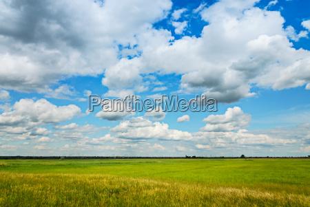 grassland in spring in burgenland