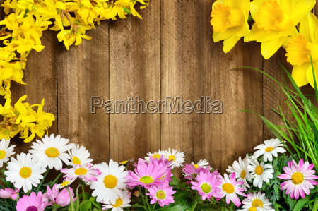 spring flowers frame wood