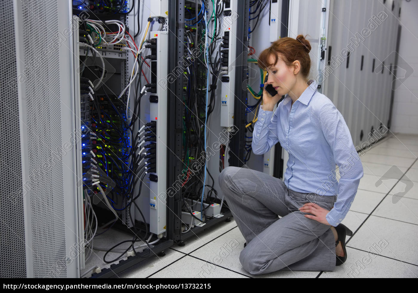 technician, talking, on, phone, while, analysing - 13732215