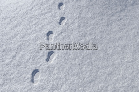 footprints in snowy landscape