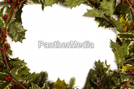 holly and christmas branches forming frame