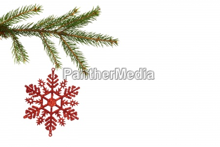 red, christmas, decoration, hanging, from, branch - 13753201