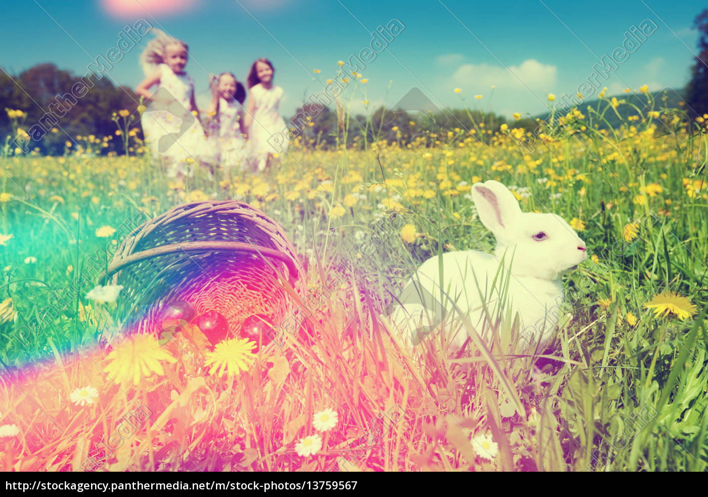 children, on, easter, egg, hunt, with - 13759567