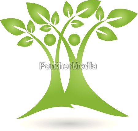 logo plant leaves people naturopaths