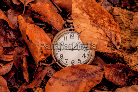 clock in the autumn