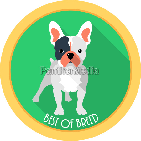 dog best of breed medal icon