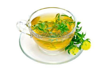 herbal tea with flowers rhodiola rosea