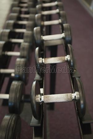 heavy black dumbbells on rack in