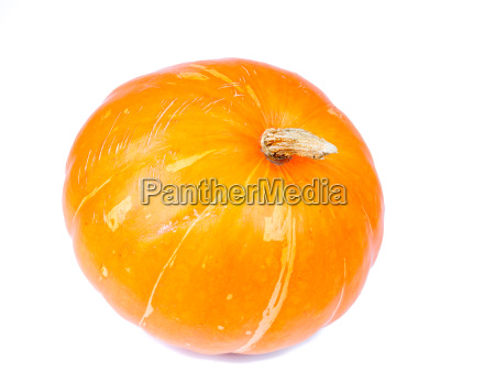 big yellow pumpkin isolated on white