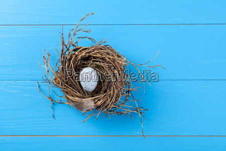 egg in the nest on a