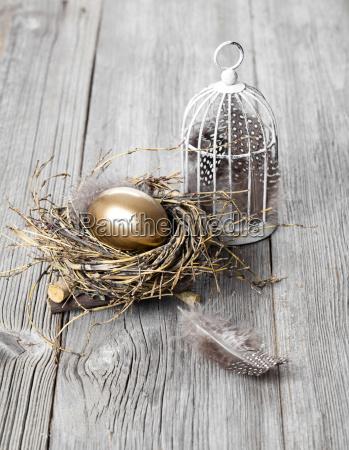 golden egg in nest on wooden