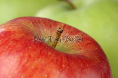 closeup red apple fruit