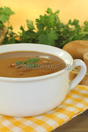 fresh duck soup with parsley