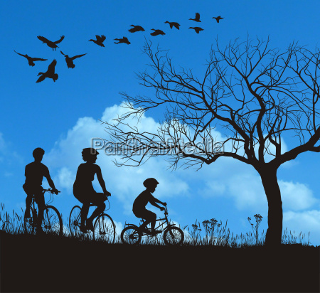 vector family cycling in the