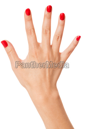 woman hands with beautiful neat fingers