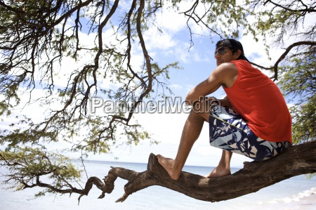 young man sits on the tree