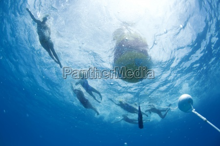 underwater view of swimmers rounding a