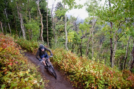 a mountain biker rides past fall