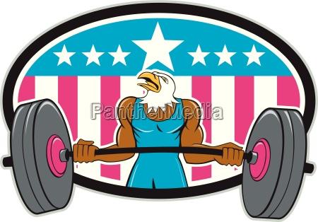 bald eagle weightlifter barbell usa flag