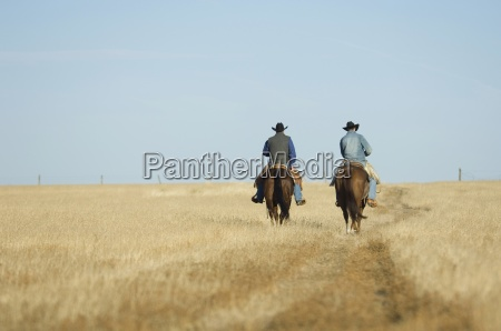 dos vaqueros a caballo en texas