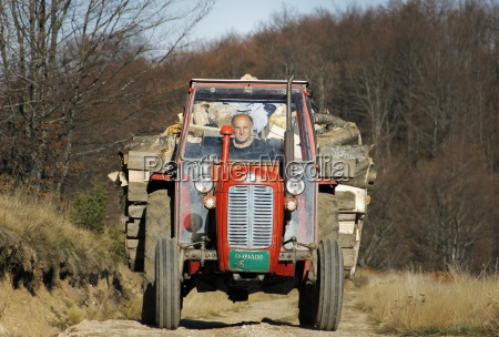 the older gentleman driving a tractor