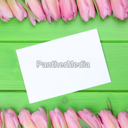 frame from tulips flowers with greeting