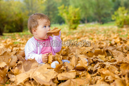 , baby, playing, with, autumn, leaves - 14038603