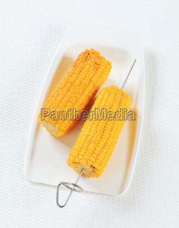 corn, on, the, cob - 14039561