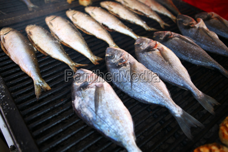 grilled, fish - 14042865