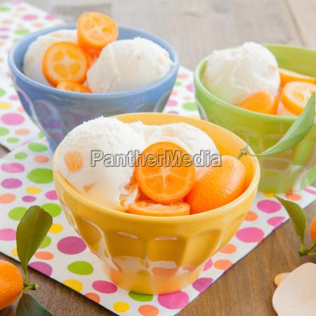 ice, cream, with, kumquats - 14043431