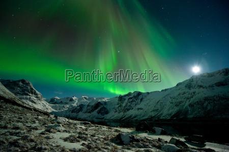 aurora borealis above the grotfjord