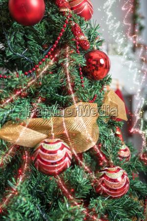 christmas, tree, closeup - 14044635