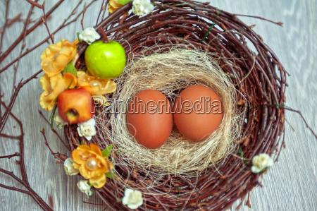 eggs, in, nest - 14044739