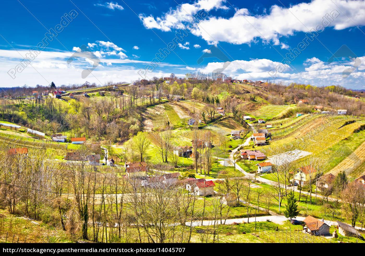 zagorje, region, green, vineyard, hills - 14045707