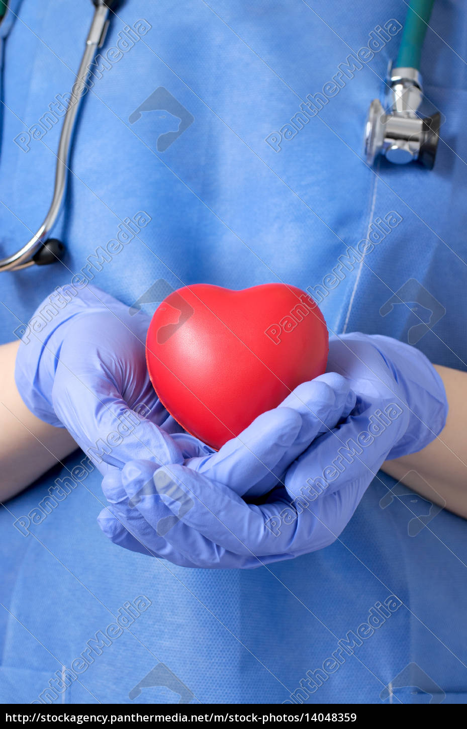 doctor, holding, a, heart - 14048359