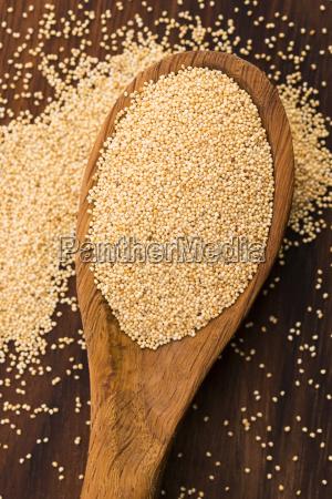 white, poppy, seeds - 14048143