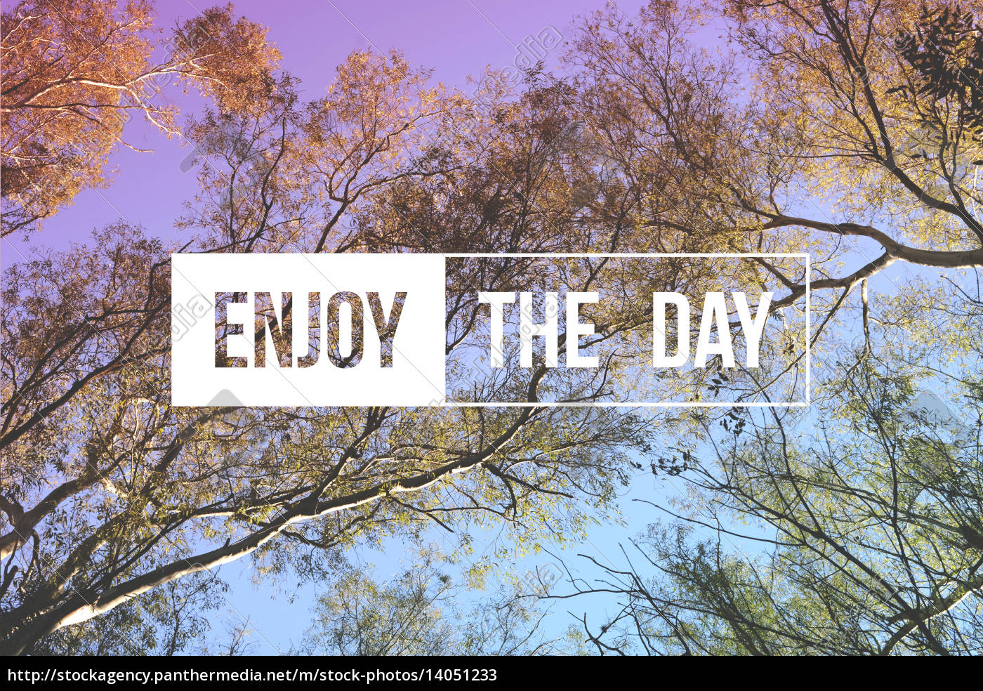 enjoy, the, day, quote, concept, tree - 14051233