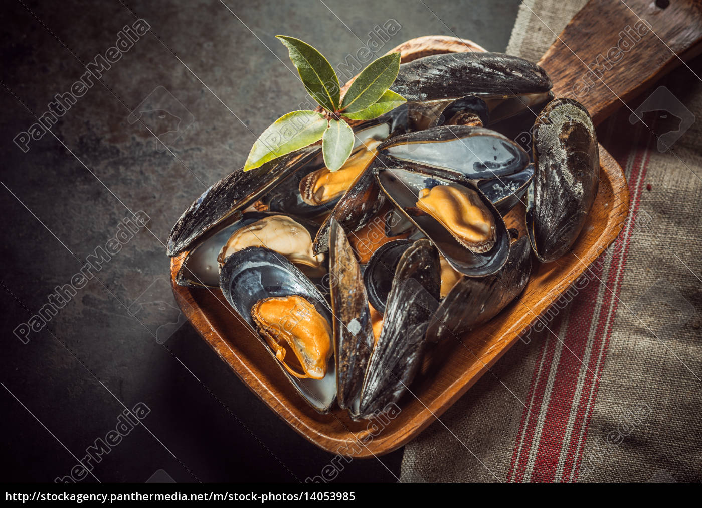 food, aliment, board, black, swarthy, jetblack - 14053985