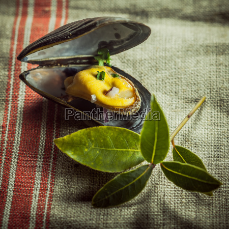 gourmet, mussel, dish, on, table, cloth - 14054005