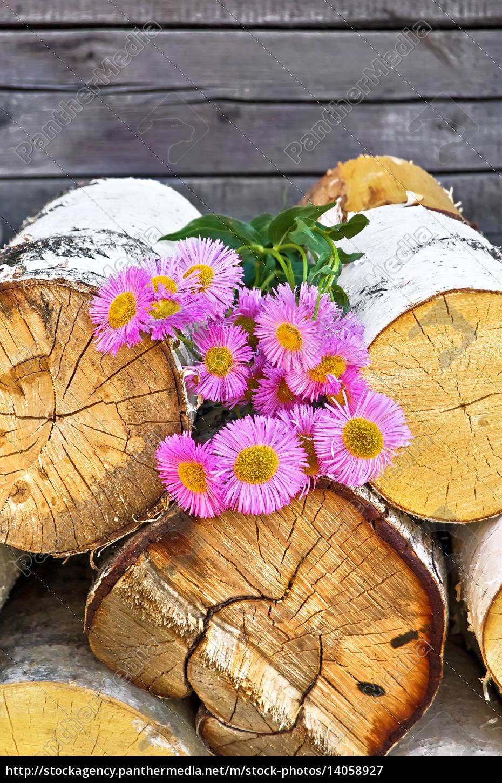 pink, flowers, on, wood - 14058927