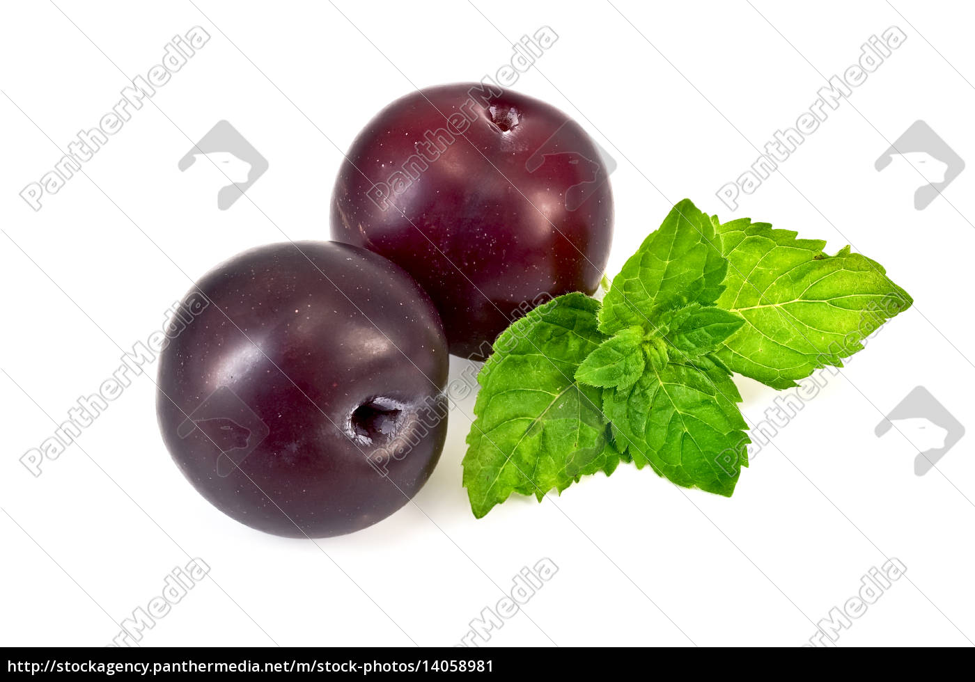 plums, with, a, sprig, of, mint - 14058981