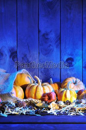 halloween, pumpkin, bag - 14059243