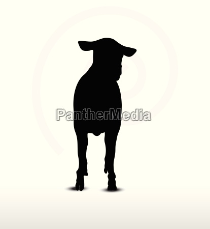 sheep silhouette with walking pose