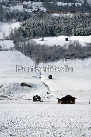 pinzgau, austria - 14061759