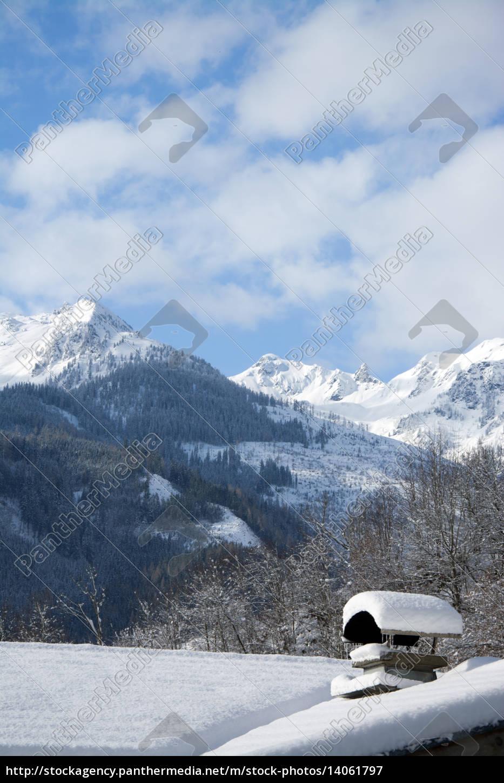 pinzgau, austria - 14061797