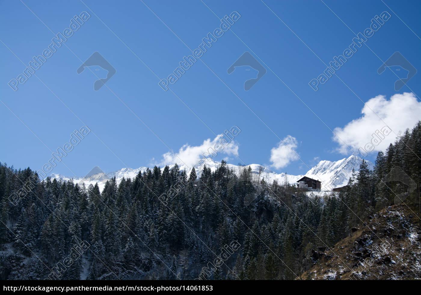 pinzgau, austria - 14061853