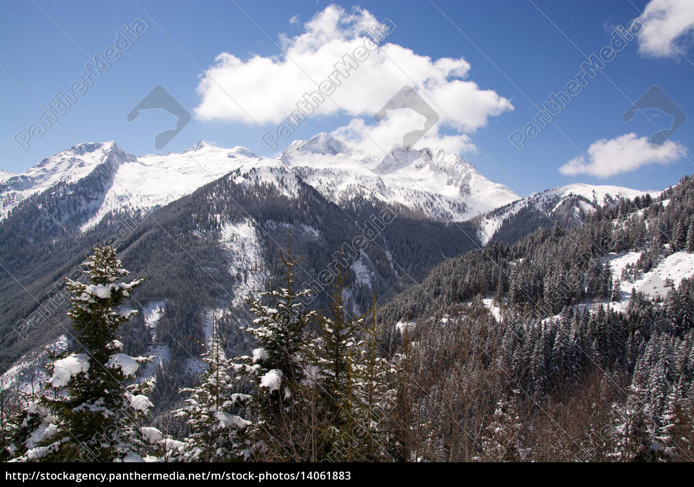 pinzgau, austria - 14061883